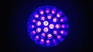 lampes d'une lampe UV