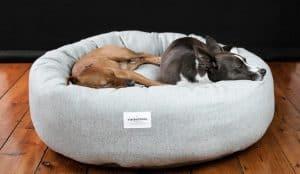 panier pour chien avec 2 chiens