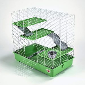 cage de rat à barreaux