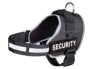 harnais pour chien de sécurité