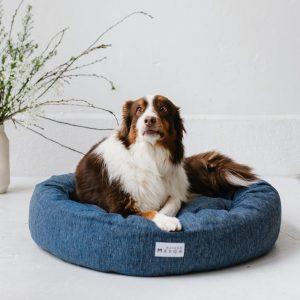 chien sur un panier pour chien grand