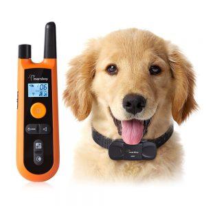 collier de dressage pour chien avec télécommande orange